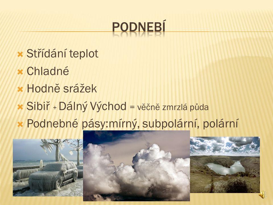  Omývá: Severní ledový oceán,Atlantik, Tichý oceán  Řeky: Jenisej (největší), Ob (nejdelší), Pečora, Sena,Dněpr,Volha  Jezera: Kaspické moře (nejvetší), Bajkal (nejhlubší)