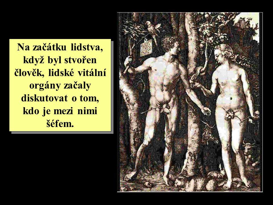 Na začátku lidstva, když byl stvořen člověk, lidské vitální orgány začaly diskutovat o tom, kdo je mezi nimi šéfem.