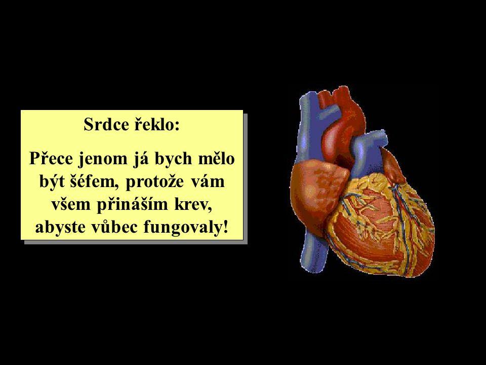 Srdce řeklo: Přece jenom já bych mělo být šéfem, protože vám všem přináším krev, abyste vůbec fungovaly.