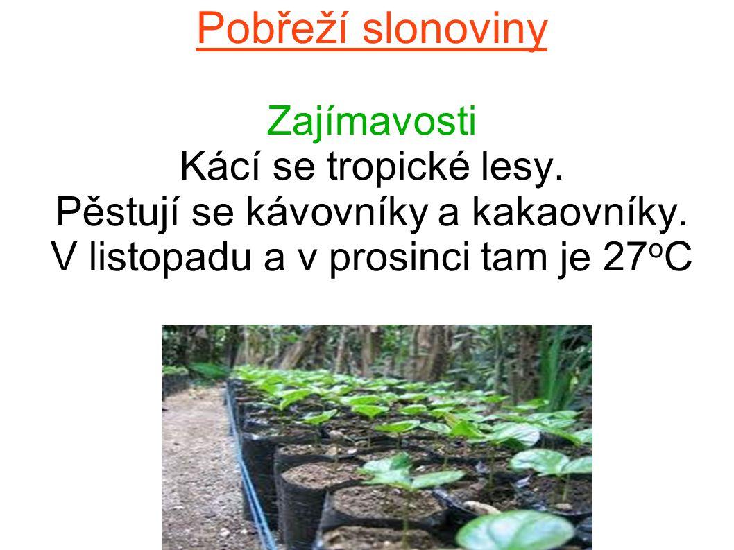 Pobřeží slonoviny Zdroje: www.mojeafrika.cz www.wikipedie.cz www.zemepis.net www.mojeafrika.cz www.wikipedie.cz www.zemepis.net