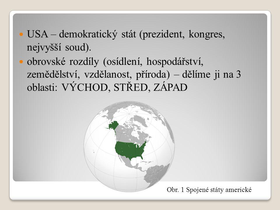 USA – demokratický stát (prezident, kongres, nejvyšší soud). obrovské rozdíly (osídlení, hospodářství, zemědělství, vzdělanost, příroda) – dělíme ji n
