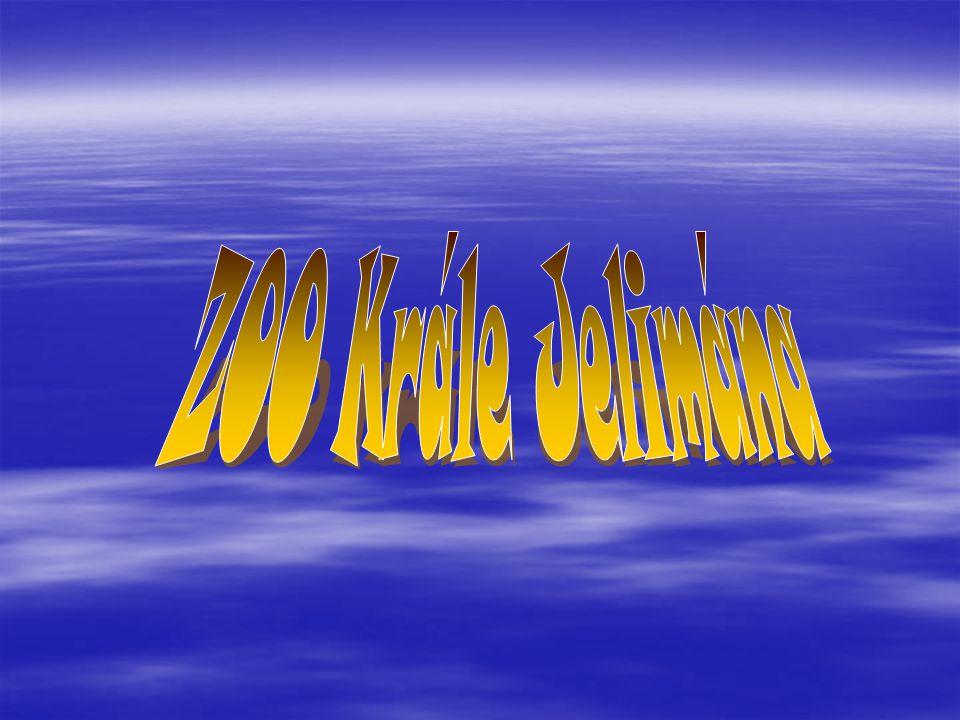 Název Vstupné - dospělý Rodinné vstupné Zlevněné vstupné Velké pohlednice PlakátyČasopis ZOO Krále Jelimána 100,-250,-65,-10,-75,-20,- ZOO Ohrada 80,-200,-50,-10,--29,- Krokodýlí ZOO 120,--60,---25,- Dvůr Králové 170,-490,-95,-20,-90,-49,- ZOO Lešná 100,--50,-17,-80,-45,- ZOO Praha 150,-450,-100,-18,-120,-49,-