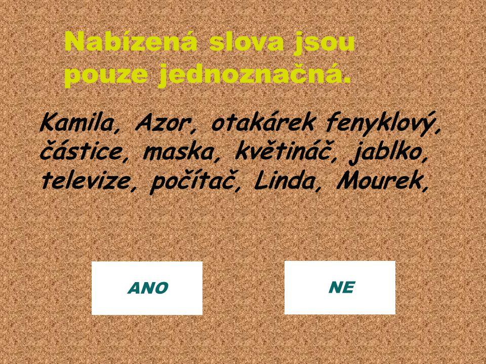 ANO NE Nabízená slova jsou pouze jednoznačná. Kamila, Azor, otakárek fenyklový, částice, maska, květináč, jablko, televize, počítač, Linda, Mourek,