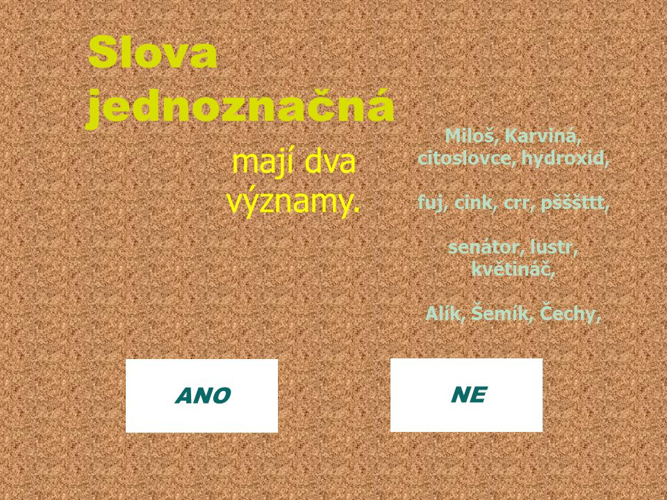 NE Slova jednoznačná mají dva významy. ANO Miloš, Karviná, citoslovce, hydroxid, fuj, cink, crr, pšššttt, senátor, lustr, květináč, Alík, Šemík, Čechy