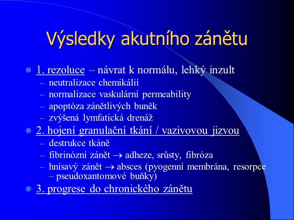 Výsledky akutního zánětu 1. rezoluce – návrat k normálu, lehký inzult – neutralizace chemikálií – normalizace vaskulární permeability – apoptóza zánět