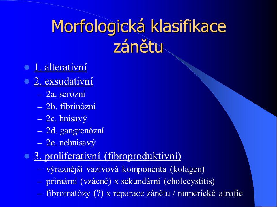 Morfologická klasifikace zánětu 1. alterativní 2. exsudativní – 2a. serózní – 2b. fibrinózní – 2c. hnisavý – 2d. gangrenózní – 2e. nehnisavý 3. prolif