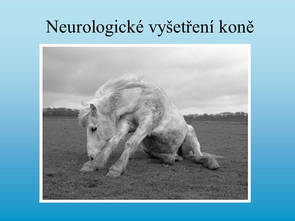 Cíl neurologického vyšetření Je to neurologický problém.