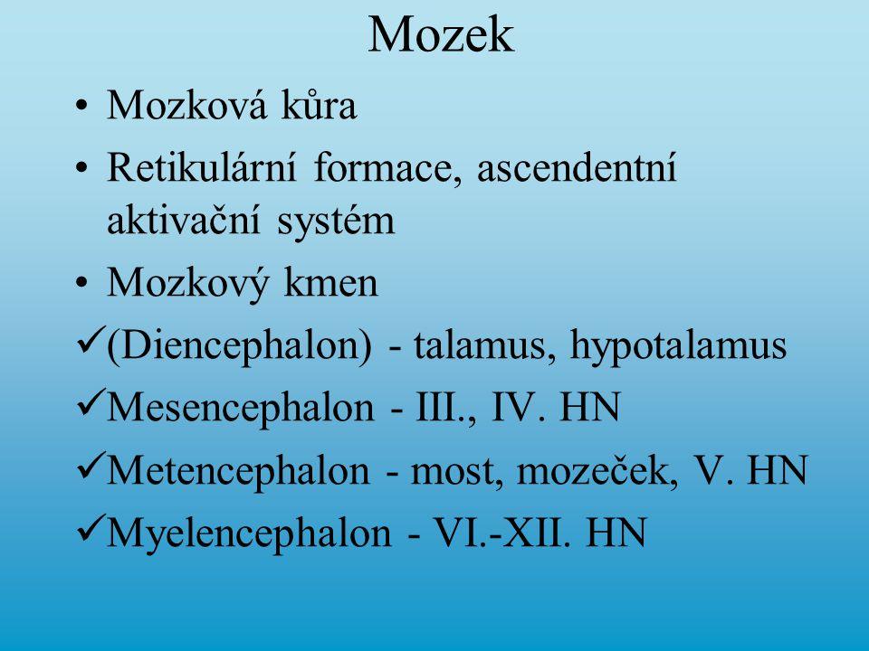 Mozek Mozková kůra Retikulární formace, ascendentní aktivační systém Mozkový kmen (Diencephalon) - talamus, hypotalamus Mesencephalon - III., IV. HN M