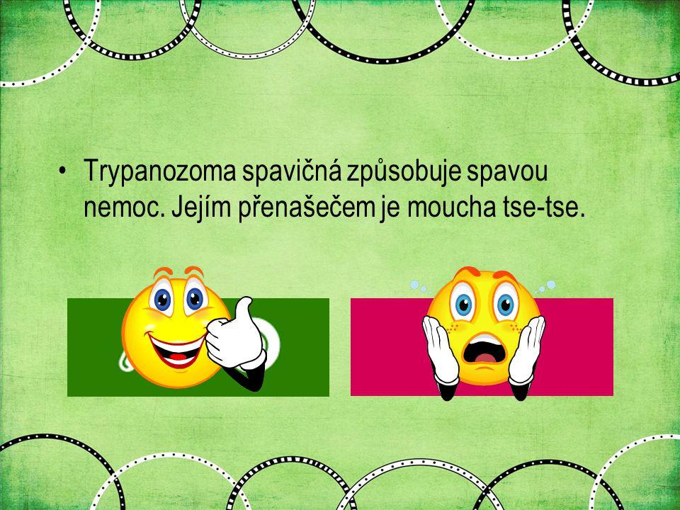 Trypanozoma spavičná způsobuje spavou nemoc. Jejím přenašečem je moucha tse-tse.
