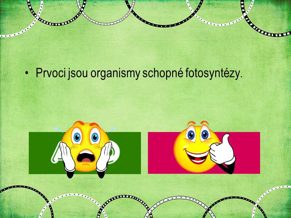 Prvoci jsou organismy schopné fotosyntézy.