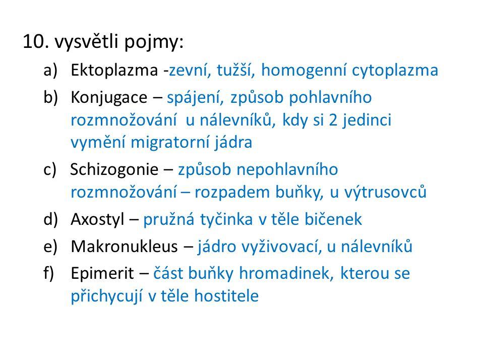 10. vysvětli pojmy: a)Ektoplazma -zevní, tužší, homogenní cytoplazma b)Konjugace – spájení, způsob pohlavního rozmnožování u nálevníků, kdy si 2 jedin