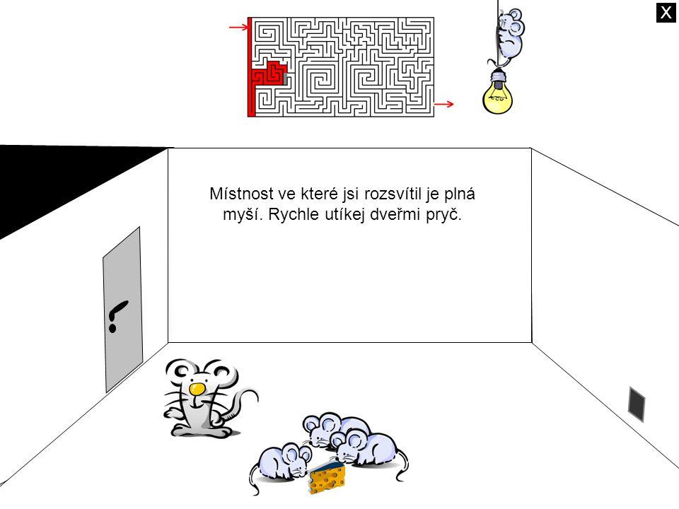 Místnost ve které jsi rozsvítil je plná myší. Rychle utíkej dveřmi pryč. X