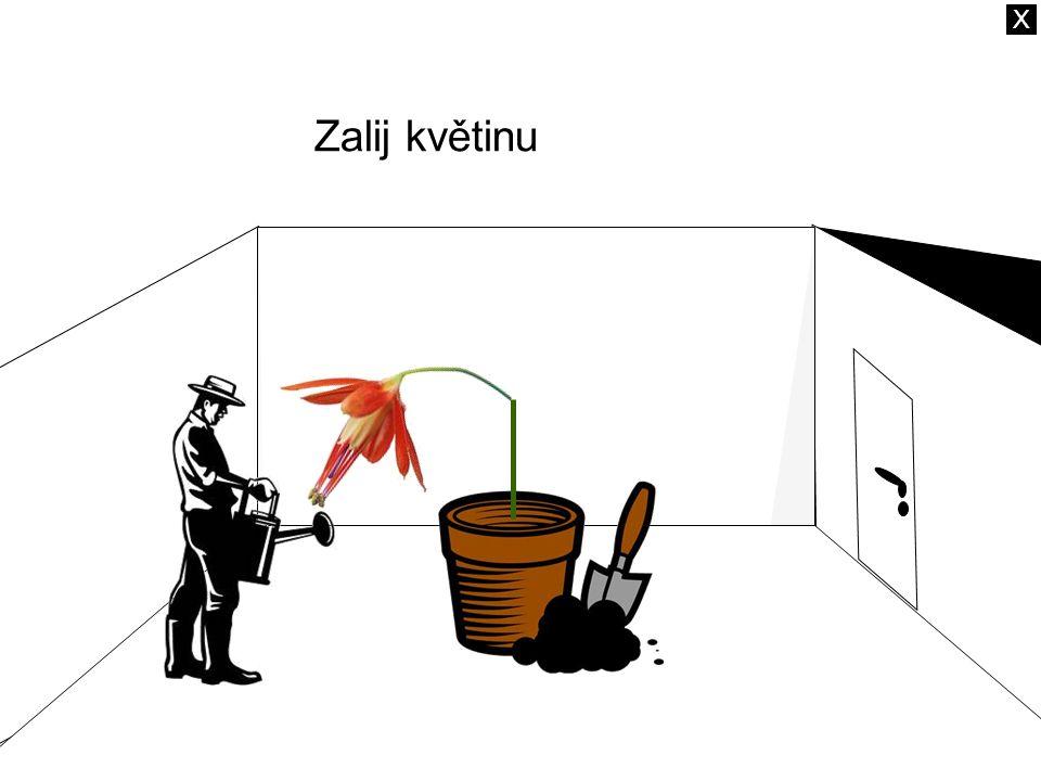 Zalij květinu X