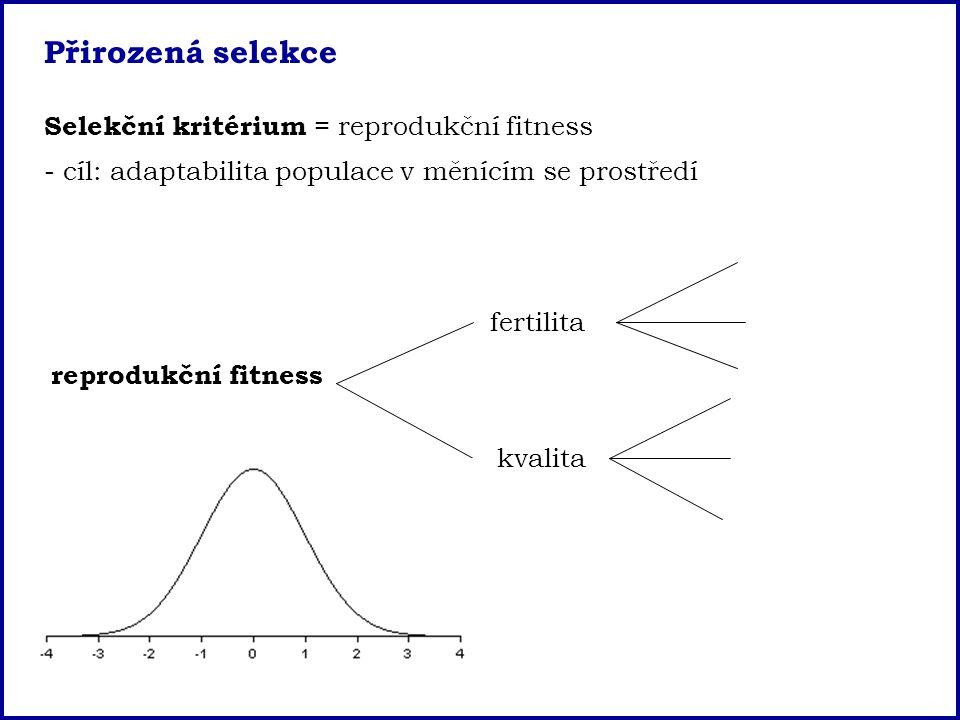 Přirozená selekce Selekční kritérium = reprodukční fitness - cíl: adaptabilita populace v měnícím se prostředí reprodukční fitness fertilita kvalita