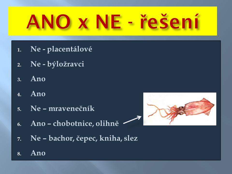1. Ne - placentálové 2. Ne - býložravci 3. Ano 4. Ano 5. Ne – mravenečník 6. Ano – chobotnice, olihně 7. Ne – bachor, čepec, kniha, slez 8. Ano