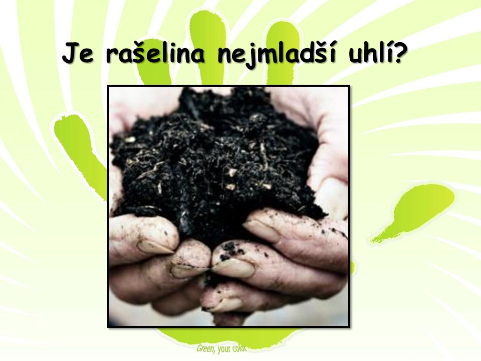 Je rašelina nejmladší uhlí