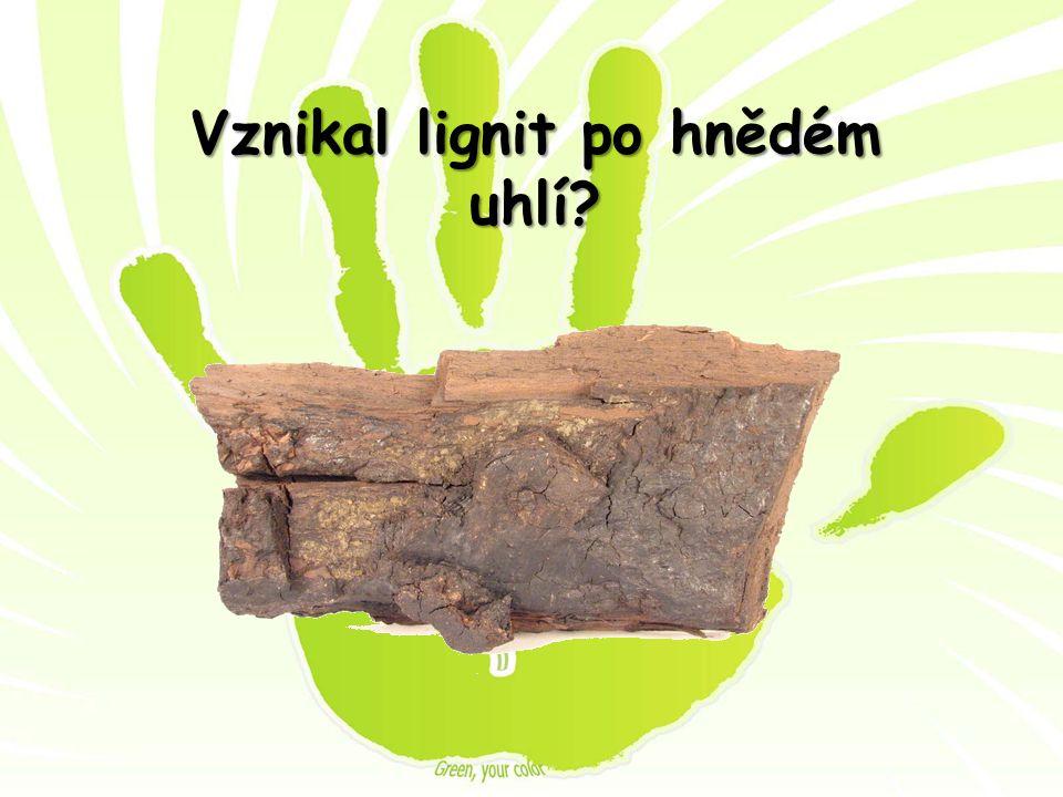 Vznikal lignit po hnědém uhlí