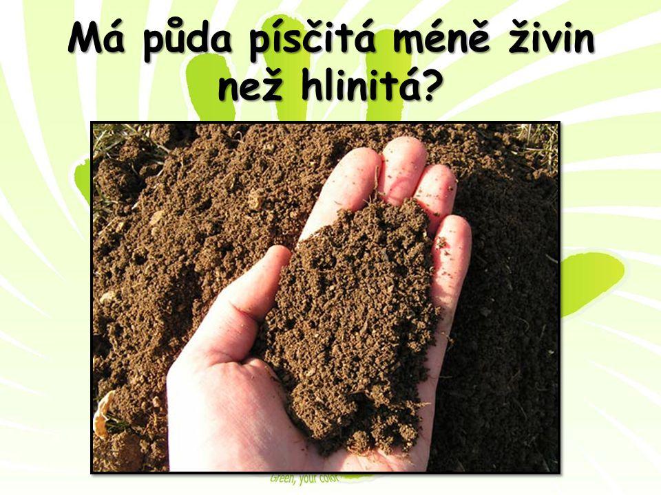 Má půda písčitá méně živin než hlinitá
