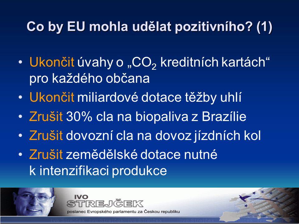 Co by EU mohla udělat pozitivního.
