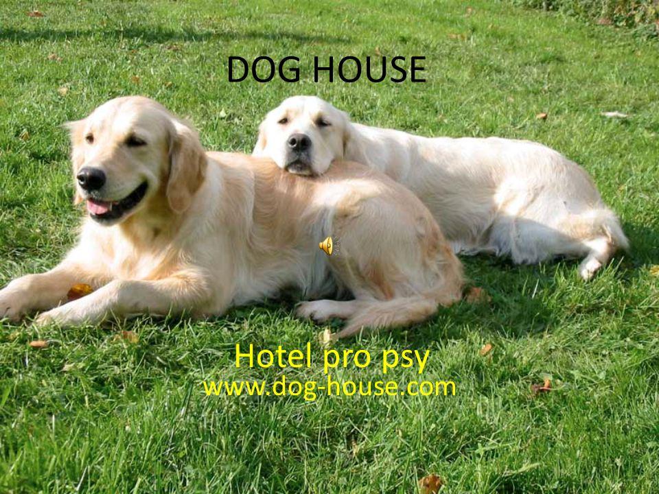 DOG HOUSE www.dog-house.com Hotel pro psy