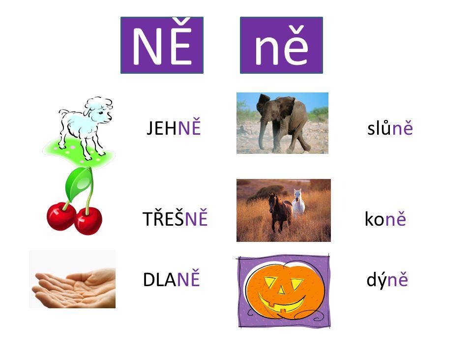 JEHNĚ slůně TŘEŠNĚ koně DLANĚ dýně NĚně