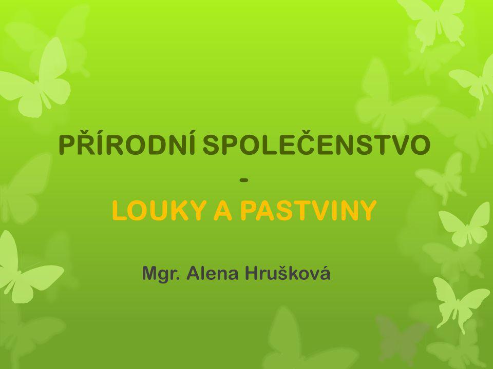P Ř ÍRODNÍ SPOLE Č ENSTVO - LOUKY A PASTVINY Mgr. Alena Hrušková