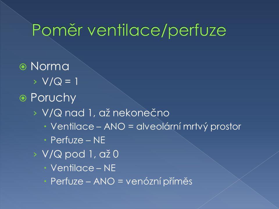  Norma › V/Q = 1  Poruchy › V/Q nad 1, až nekonečno  Ventilace – ANO = alveolární mrtvý prostor  Perfuze – NE › V/Q pod 1, až 0  Ventilace – NE  Perfuze – ANO = venózní příměs