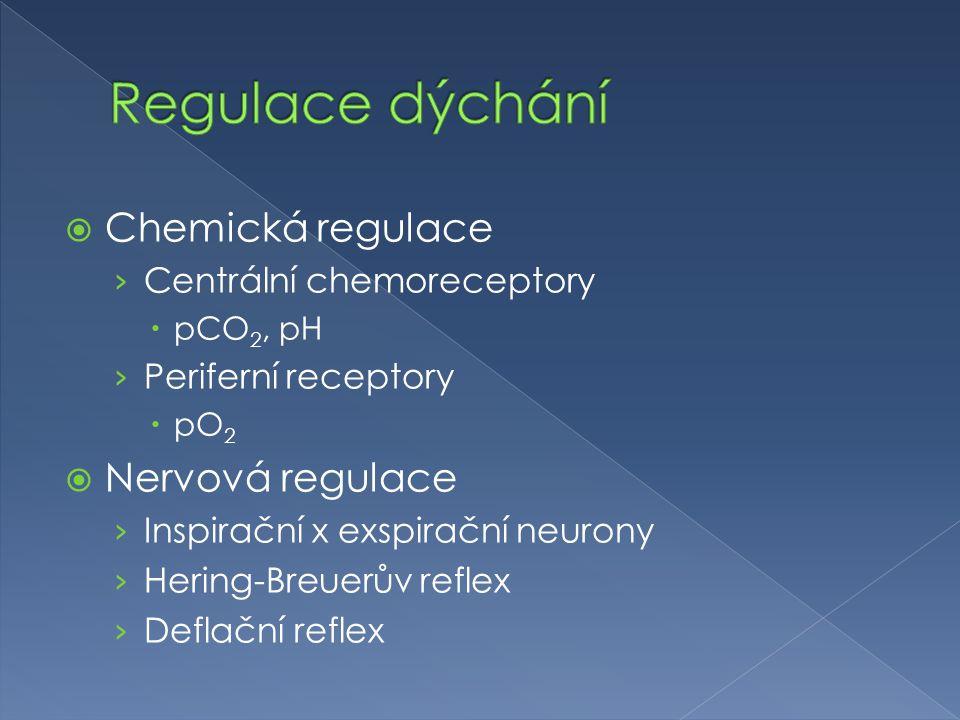  Chemická regulace › Centrální chemoreceptory  pCO 2, pH › Periferní receptory  pO 2  Nervová regulace › Inspirační x exspirační neurony › Hering-