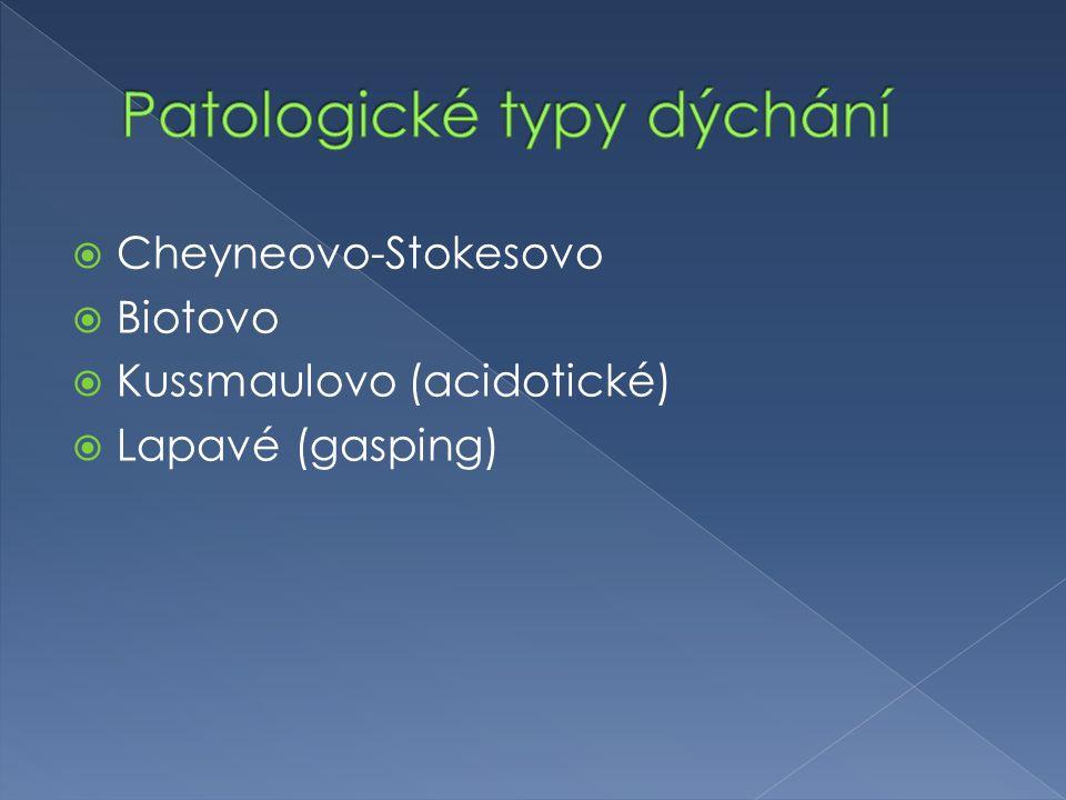  Cheyneovo-Stokesovo  Biotovo  Kussmaulovo (acidotické)  Lapavé (gasping)