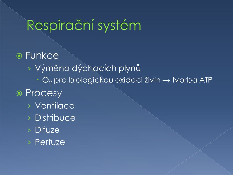  Funkce › Výměna dýchacích plynů  O 2 pro biologickou oxidaci živin → tvorba ATP  Procesy › Ventilace › Distribuce › Difuze › Perfuze