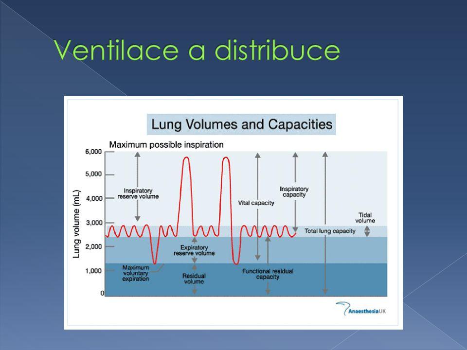  TLC = VT + IRV + ERV + RV  VC = VT + IRV + ERV  IC = VT + IRV  FRC = ERV + RV  Anatomický mrtvý prostor › Část RS mimo alvelokapilární membránu  Fyziologický mrtvý prostor › Alveoly, které jsou ventilovány, ale nejsou perfundovány