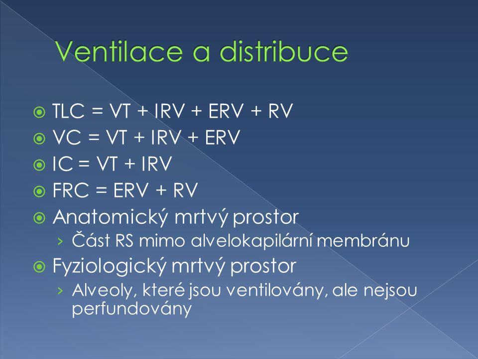 TLC = VT + IRV + ERV + RV  VC = VT + IRV + ERV  IC = VT + IRV  FRC = ERV + RV  Anatomický mrtvý prostor › Část RS mimo alvelokapilární membránu