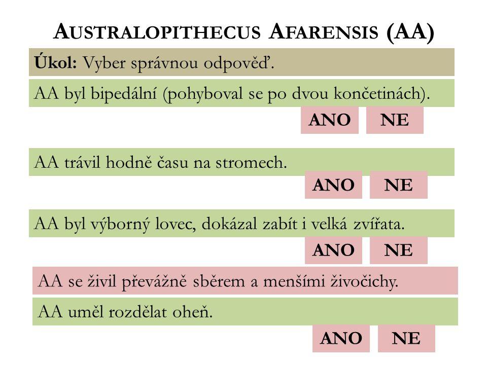 A USTRALOPITHECUS A FARENSIS (AA) Úkol: Vyber správnou odpověď.