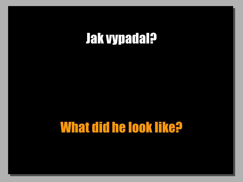 Jak vypadal What did he look like
