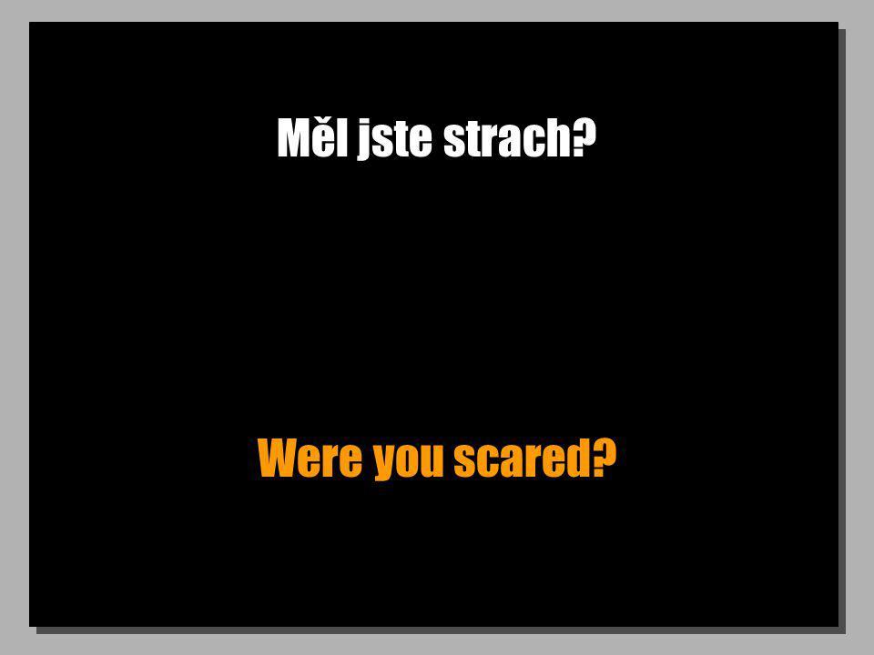 Měl jste strach? Were you scared?