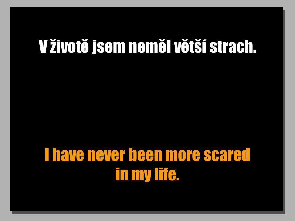 V životě jsem neměl větší strach. I have never been more scared in my life.