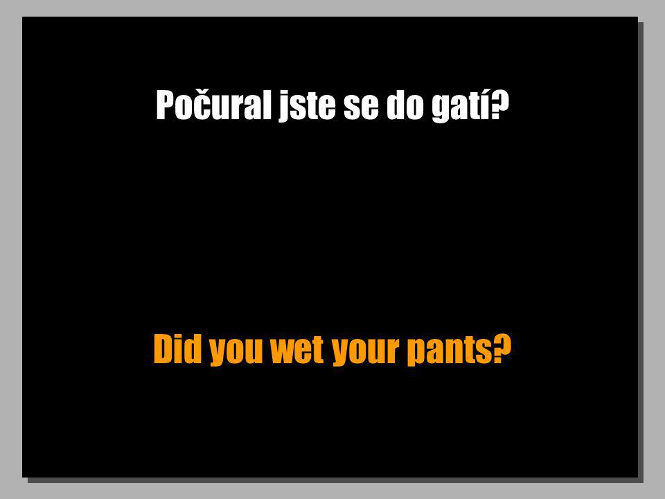 Počural jste se do gatí Did you wet your pants