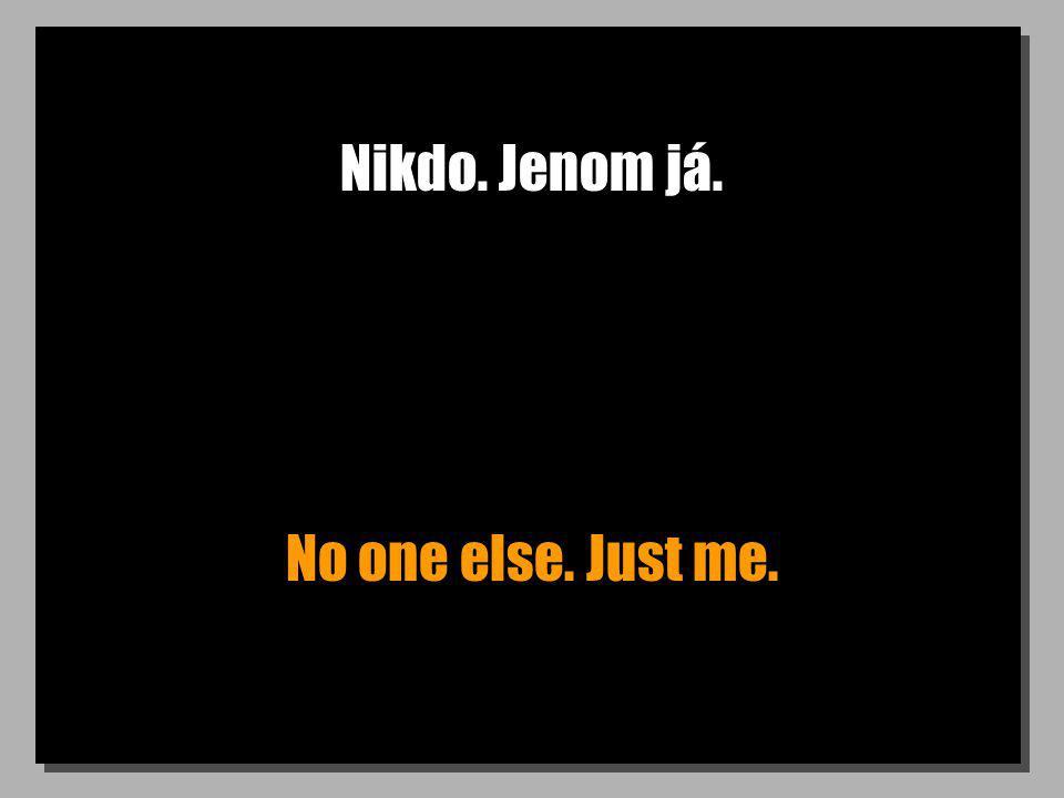 Nikdo. Jenom já. No one else. Just me.