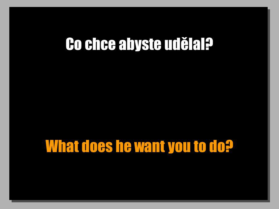 Co chce abyste udělal What does he want you to do