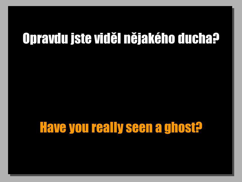 Opravdu jste viděl nějakého ducha? Have you really seen a ghost?