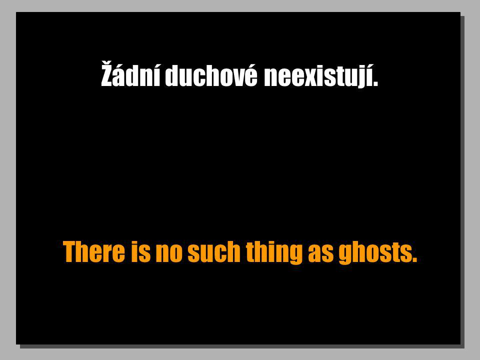 Žádní duchové neexistují. There is no such thing as ghosts.