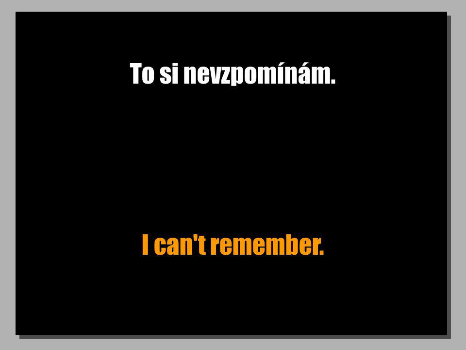 To si nevzpomínám. I can t remember.