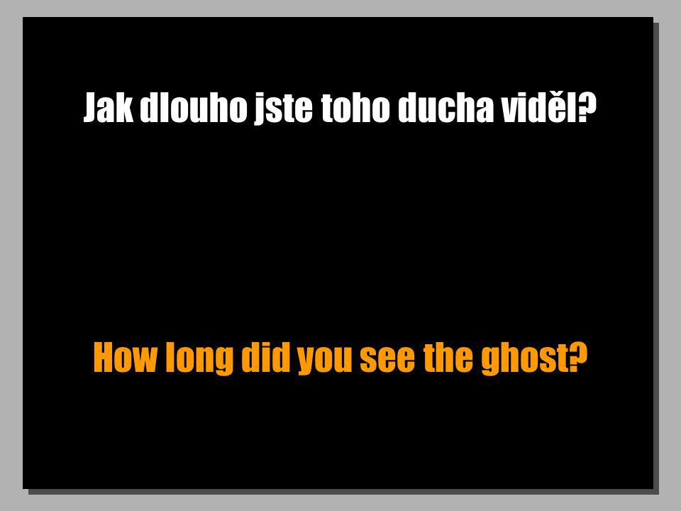 Jak dlouho jste toho ducha viděl? How long did you see the ghost?