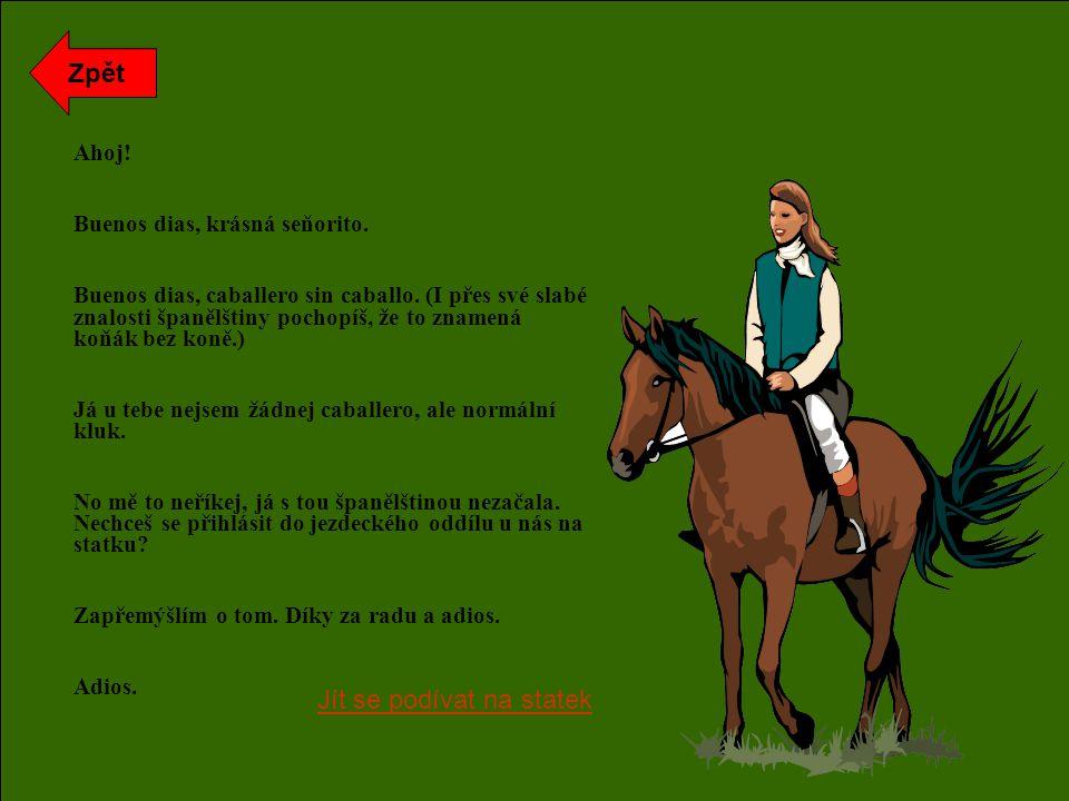 Ahoj. Buenos dias, krásná seňorito. Buenos dias, caballero sin caballo.