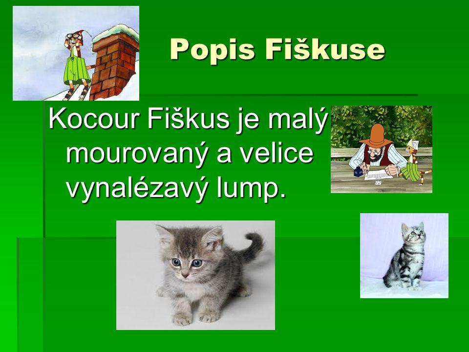 Popis Fiškuse Kocour Fiškus je malý mourovaný a velice vynalézavý lump.