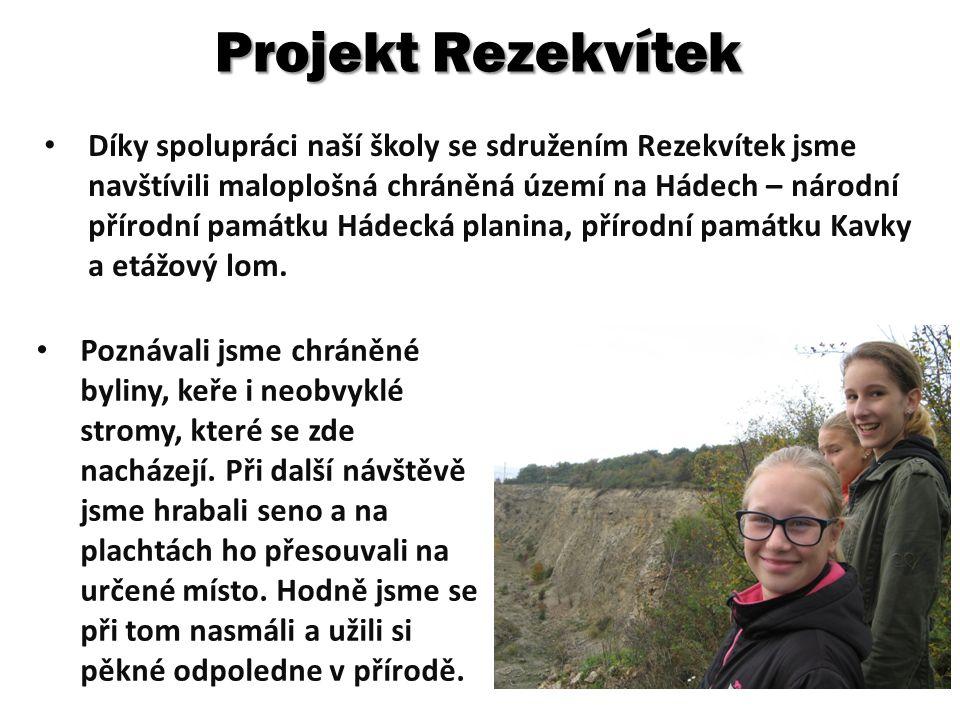 Projekt Rezekvítek Díky spolupráci naší školy se sdružením Rezekvítek jsme navštívili maloplošná chráněná území na Hádech – národní přírodní památku Hádecká planina, přírodní památku Kavky a etážový lom.