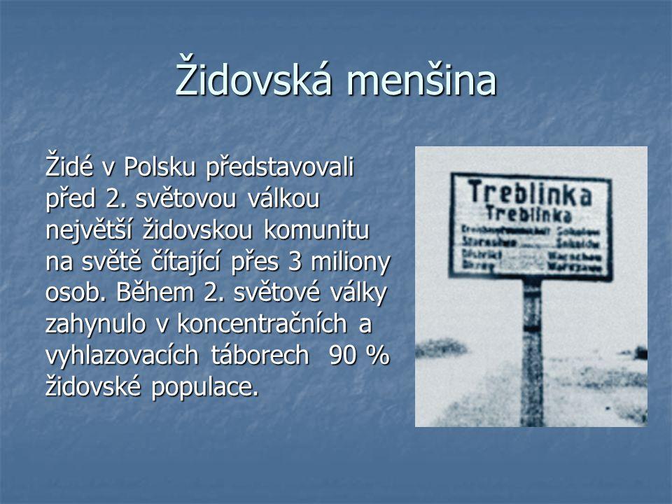 Židovská menšina Židé v Polsku představovali před 2. světovou válkou největší židovskou komunitu na světě čítající přes 3 miliony osob. Během 2. světo
