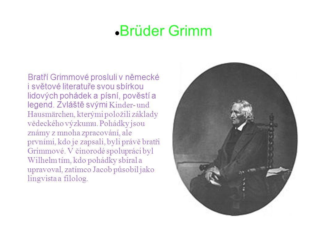 Johann Wolfgang von Goethe Goethe byl německý básník, prozaik, dramatik, historik umění a umělecký kritik, právník a politik, biolog a stavitel.Vystudoval práva a přírodní vědy (učinil několik objevů, které popsal ve svých dílech).