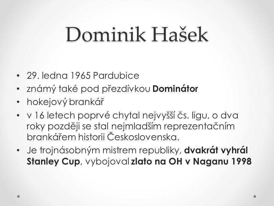 Dominik Hašek 29. ledna 1965 Pardubice známý také pod přezdívkou Dominátor hokejový brankář v 16 letech poprvé chytal nejvyšší čs. ligu, o dva roky po