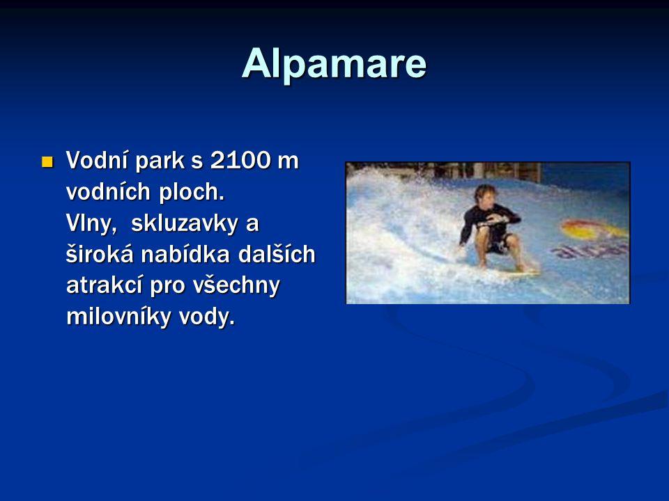 Alpamare Vodní park s 2100 m vodních ploch. Vlny, skluzavky a široká nabídka dalších atrakcí pro všechny milovníky vody. Vodní park s 2100 m vodních p